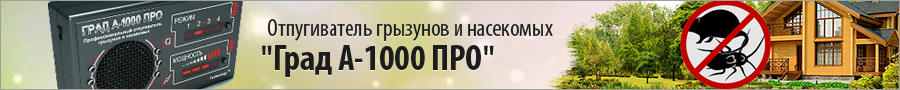 Мир Гаджетов Крым